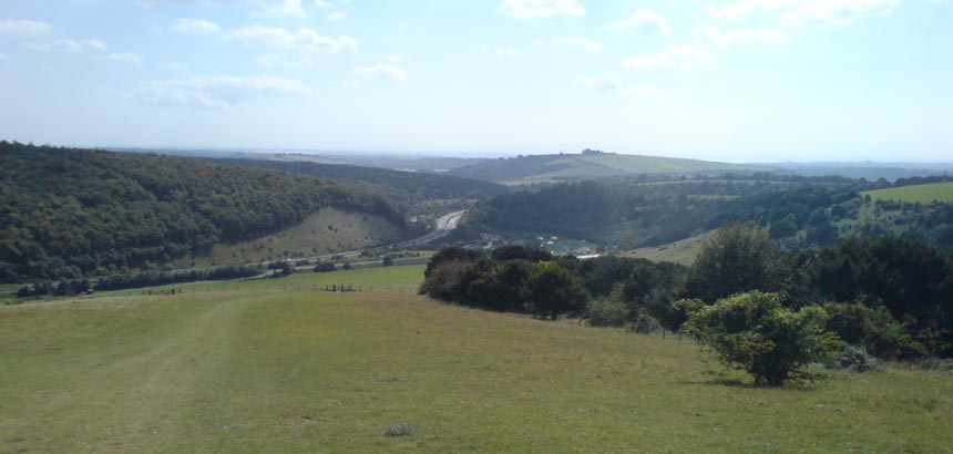 Downs from Butser Hill